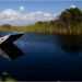 Une nuit riche en sensations au cœur des Everglades…
